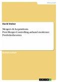 Mergers & Acquisitions. Post-Merger-Controlling anhand moderner Portfoliotheorien