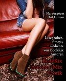BookRix Autoren-Mix Erotik (eBook, ePUB)