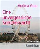 Eine Sommernacht voller Träume (eBook, ePUB)