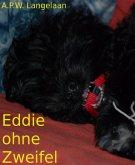 Eddie ohne Zweifel (eBook, ePUB)