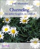 Channeling (eBook, ePUB)