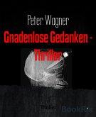 Gnadenlose Gedanken - Thriller (eBook, ePUB)