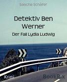 Detektiv Ben Werner (eBook, ePUB)