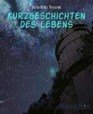 Kurzgeschichten des Lebens (eBook, ePUB)