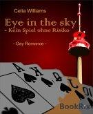 Eye in the sky - Kein Spiel ohne Risiko (eBook, ePUB)