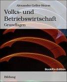 Volks- und Betriebswirtschaft (eBook, ePUB)