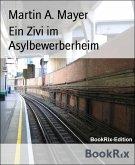 Ein Zivi im Asylbewerberheim (eBook, ePUB)