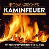 Romantisches Kaminfeuer-Harmonische Stimm