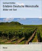 Erlebnis Deutsche Weinstraße (eBook, ePUB)