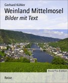 Weinland Mittelmosel (eBook, ePUB)