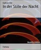 In der Stille der Nacht (eBook, ePUB)