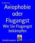 Aviophobie oder Flugangst (eBook, ePUB)