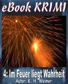 Krimi 004: Im Feuer liegt Wahrheit (eBook, ePUB)