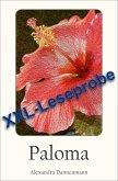 Paloma - Ein Liebesroman : XXL - Leseprobe (eBook, ePUB)