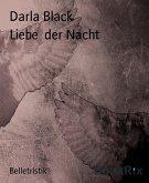 Liebe der Nacht (eBook, ePUB)