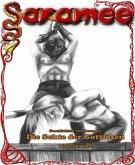 Geschichten aus Saramee 2: Die Sekte der Gottlosen (eBook, ePUB)