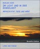 Im Licht und in der Dunkelheit (eBook, ePUB)
