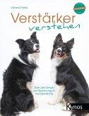 Verstärker verstehen (eBook, PDF)