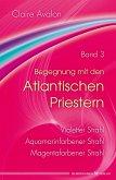 Begegnung mit den Atlantischen Priestern Band 3 (eBook, ePUB)