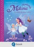 Du schaffst das, kleine Luftfee! / Maluna Mondschein Bd.13 (eBook, ePUB)