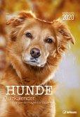 Hunde Quizkalender 2020