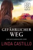 Gefährlicher Weg (eBook, ePUB)