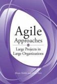 Agile Approaches on Large Projects in Large Organizations