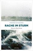 Rache im Sturm (eBook, ePUB)