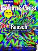 Gehirn&Geist 1/2019 Rausch (eBook, PDF)