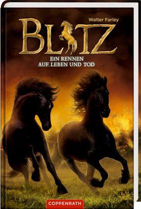 Buch-Reihe Blitz