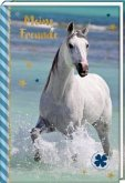 Freundebuch - Pferdefreunde - Pferd am Meer