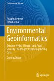 Environmental Geoinformatics (eBook, PDF)