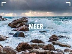 Meer - Ackermann Gallery 2020