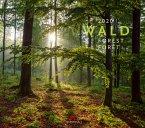 Wald 2020