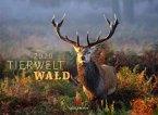 Tierwelt Wald 2020