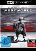 Westworld - Staffel 2: Das Tor