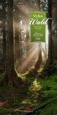Mythos Wald 2020