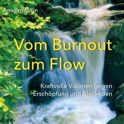 Vom Burnout zum Flow, 4 Audio-CDs - Grün, Anselm