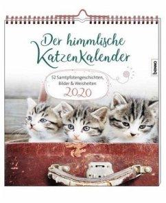Der himmlische Katzenkalender 2020 - Wendler, Heike