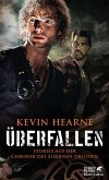 Überfallen (eBook, ePUB)