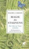 Magie des Staunens (eBook, ePUB)