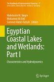 Egyptian Coastal Lakes and Wetlands: Part I (eBook, PDF)