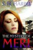The Mystery of Meri (Ghost Hunters Mystery Parables) (eBook, ePUB)