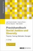 Praxishandbuch Social Justice und Diversity (eBook, PDF)