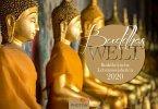 Buddha 2020 Wandkalender