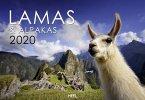 Lamas & Alpakas 2020