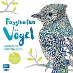 Faszination Vögel - Ausmalen und Staunen (Mängelexemplar)
