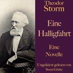 Theodor Storm: Eine Halligfahrt (MP3-Download)