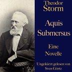 Theodor Storm: Aquis submersus (MP3-Download)