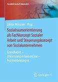 Sozialraumorientierung als Fachkonzept Sozialer Arbeit und Steuerungskonzept von Sozialunternehmen